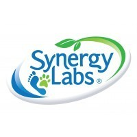 Synergy Labs (США)