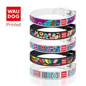 Collar WAU DOG Printed
