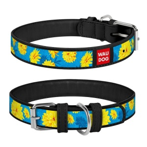 Collar WAU DOG Design Exclusive 18-24 см