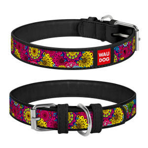 Collar WAU DOG Design Exclusive 20-28 см