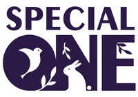 Special One (Украина)