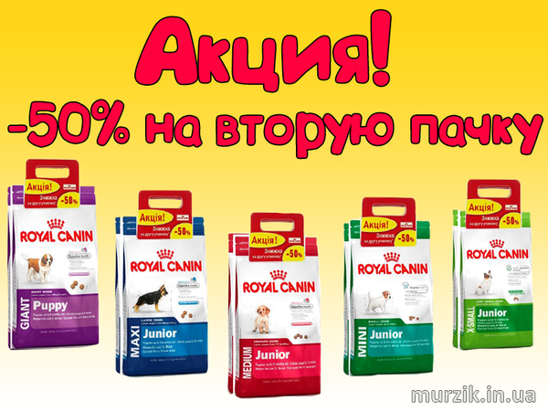 Скидка 50% на Royal Canin!