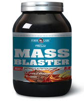 Form Labs        Mass Blaster        1500 г.