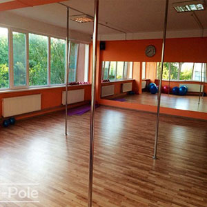 poles in the dance studio